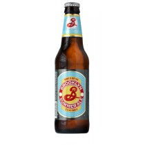 Brooklyn Summer Ale 12oz - 12 Bottles