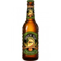 Shock Top Pumpkin Wheat 12oz - 12 Bottles